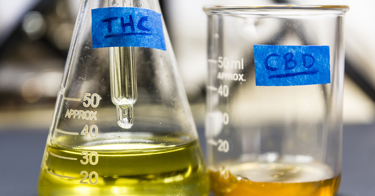 CBD Oil: A Health Product to Watch out For