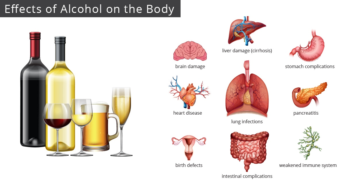 Infographic: The effects of alcohol on the body
